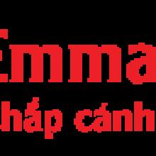 Du học Emmanuel – Tư vấn du học và đào tạo uy tín tại Hải Phòng