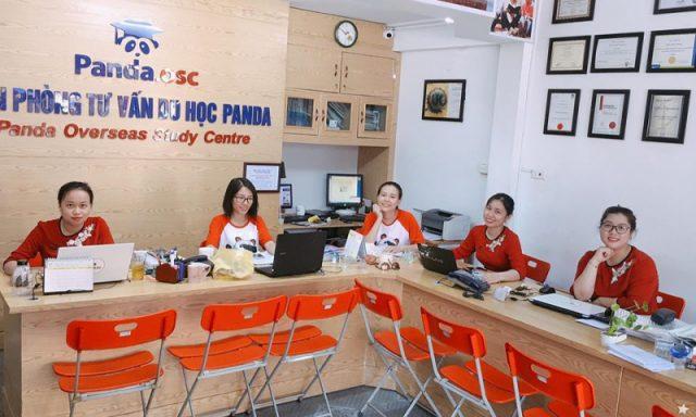 Tổ chức giáo dục Panda